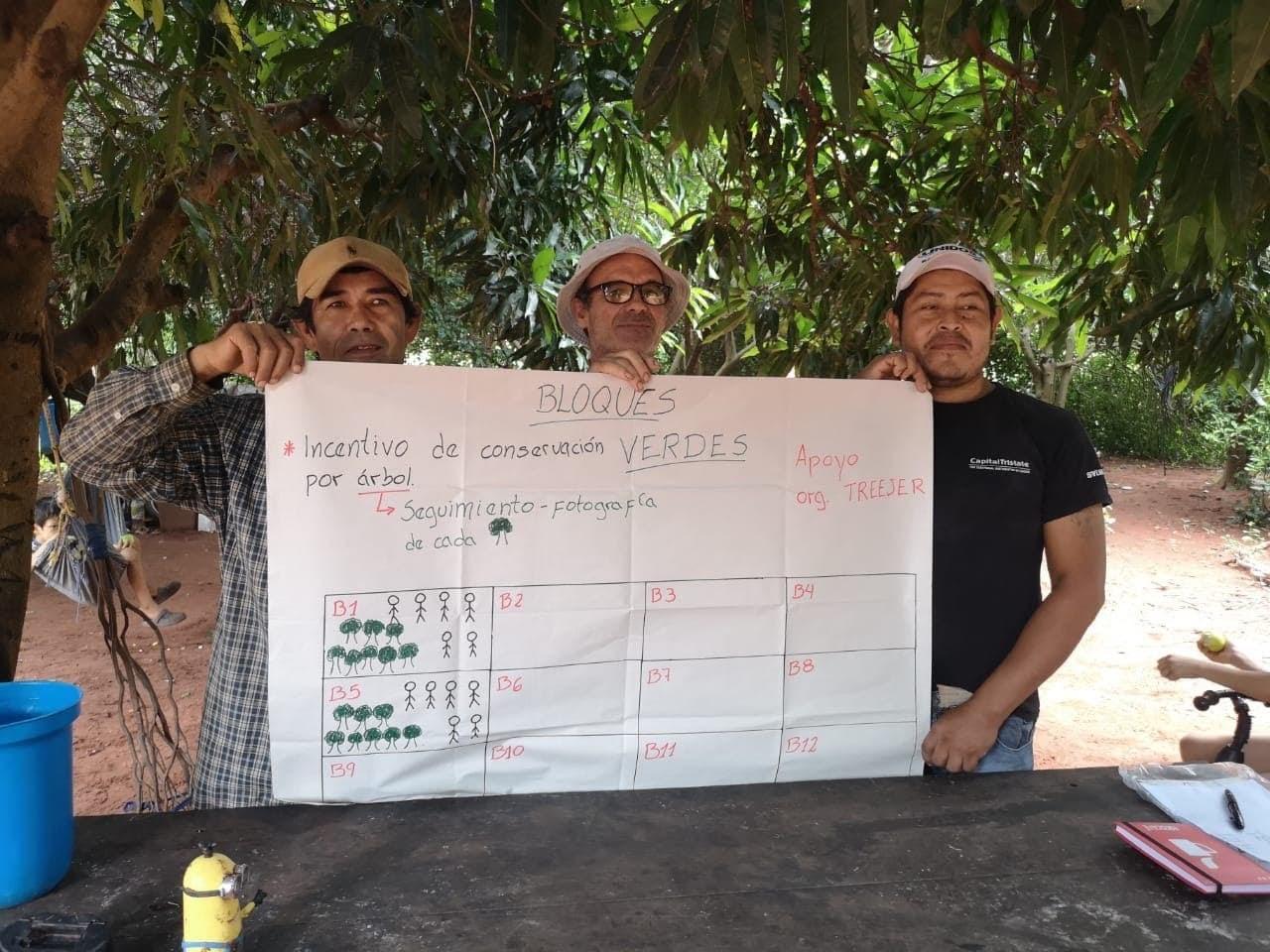 Treejer team