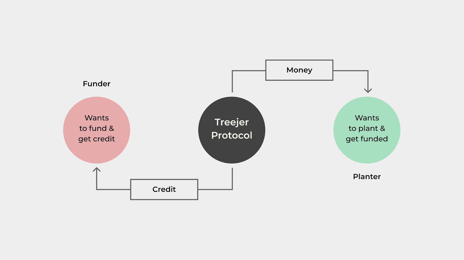 Treejer protocol